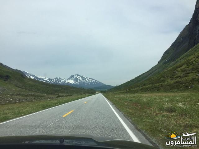 565763 المسافرون العرب النرويج بلد الطبيعه والجمال