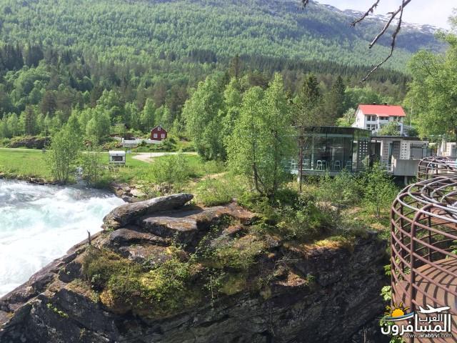 565776 المسافرون العرب النرويج بلد الطبيعه والجمال