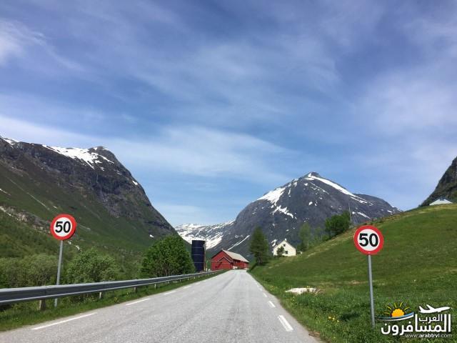 565779 المسافرون العرب النرويج بلد الطبيعه والجمال