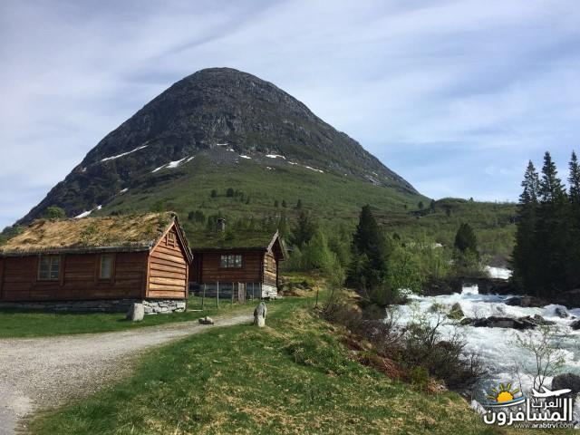 565781 المسافرون العرب النرويج بلد الطبيعه والجمال