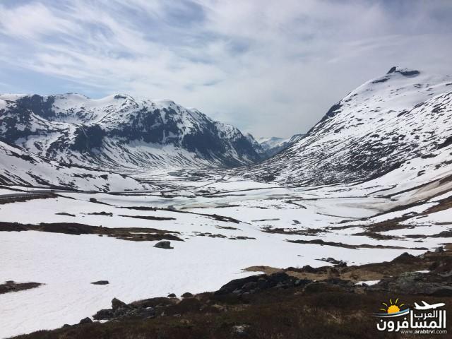 565785 المسافرون العرب النرويج بلد الطبيعه والجمال