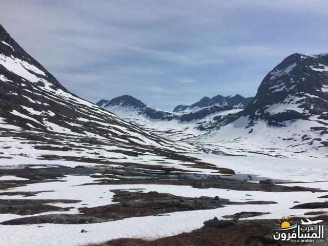 565787 المسافرون العرب النرويج بلد الطبيعه والجمال
