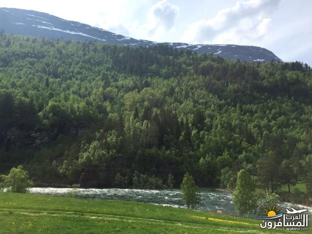 565812 المسافرون العرب النرويج بلد الطبيعه والجمال
