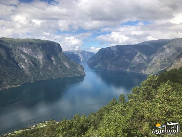 567386 المسافرون العرب الأراضي النرويجية