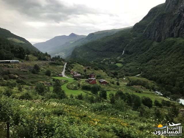567420 المسافرون العرب الأراضي النرويجية