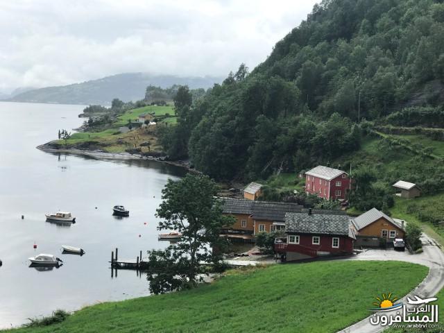 567469 المسافرون العرب الأراضي النرويجية