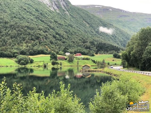 567689 المسافرون العرب الأراضي النرويجية
