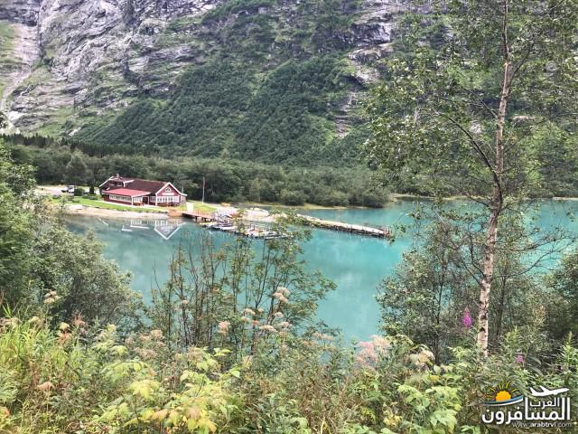 567713 المسافرون العرب الأراضي النرويجية