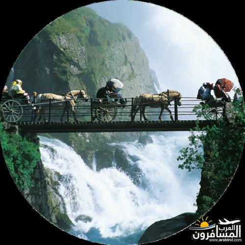 567825 المسافرون العرب الأراضي النرويجية