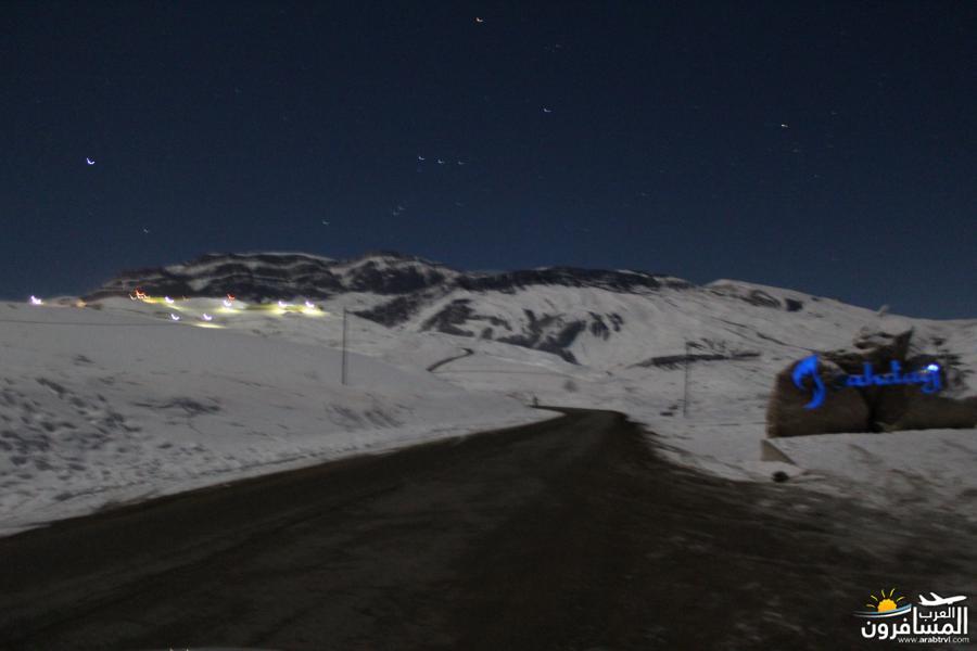 569231 المسافرون العرب منتجعات التزلج فى جورجيا