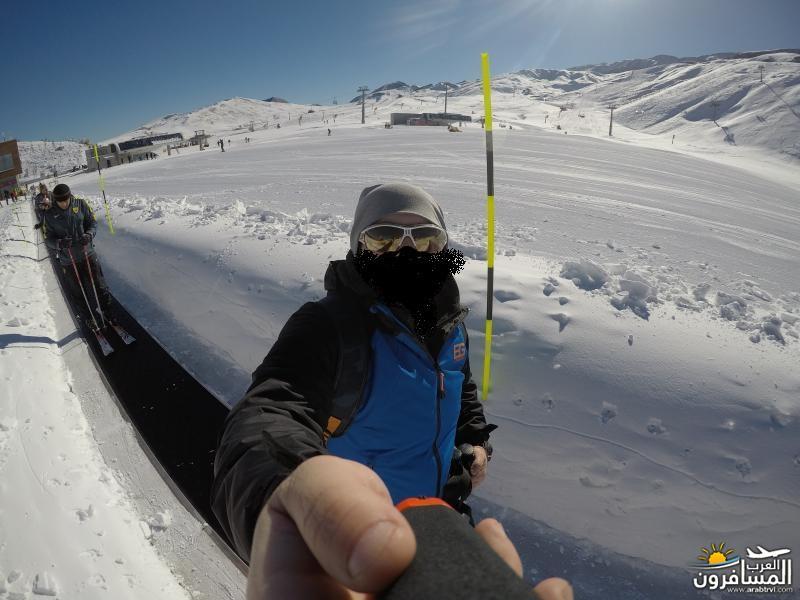 569248 المسافرون العرب منتجعات التزلج فى جورجيا
