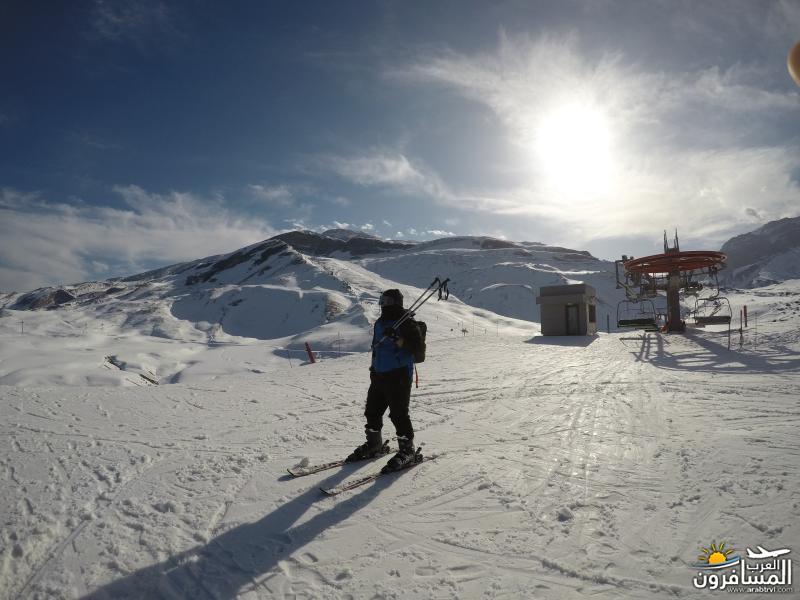 569279 المسافرون العرب منتجعات التزلج فى جورجيا