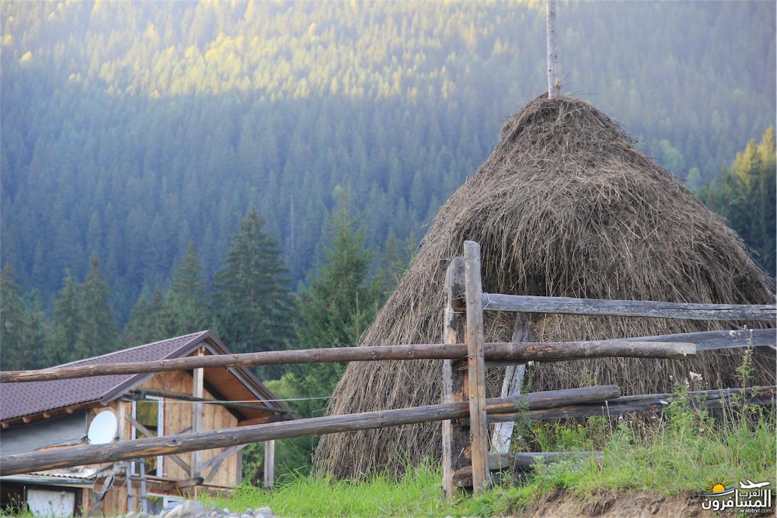 580272 المسافرون العرب مدينة لفيف غرب أوكرانيا