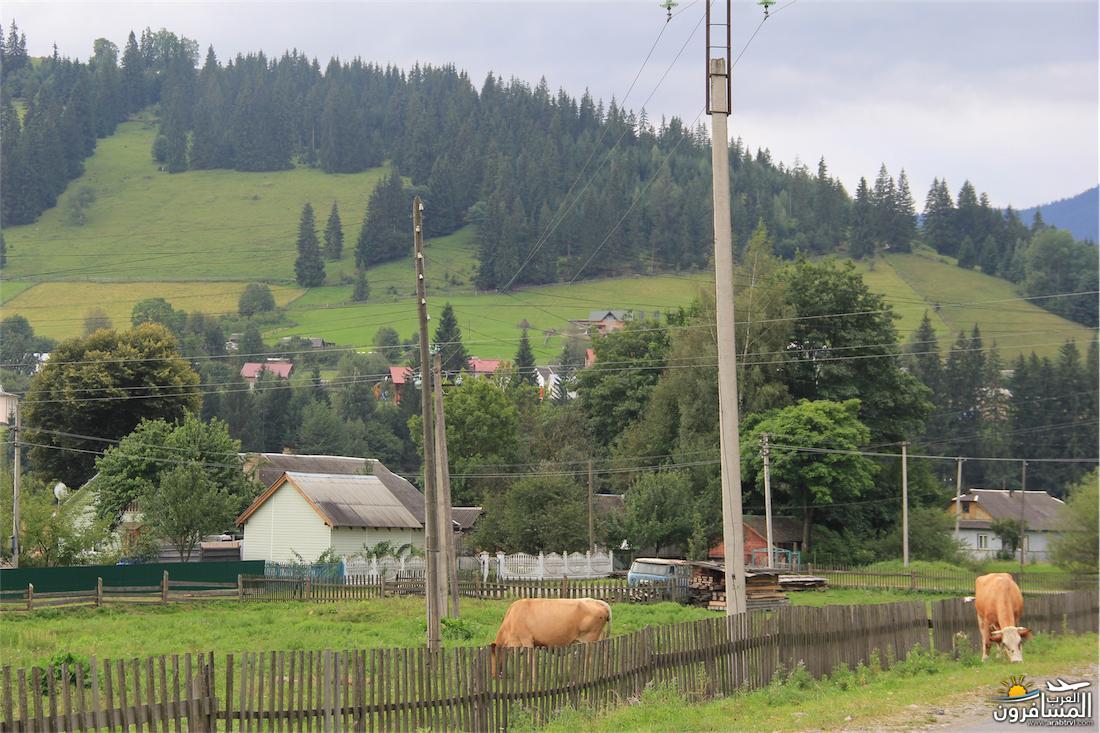 580321 المسافرون العرب مدينة لفيف غرب أوكرانيا