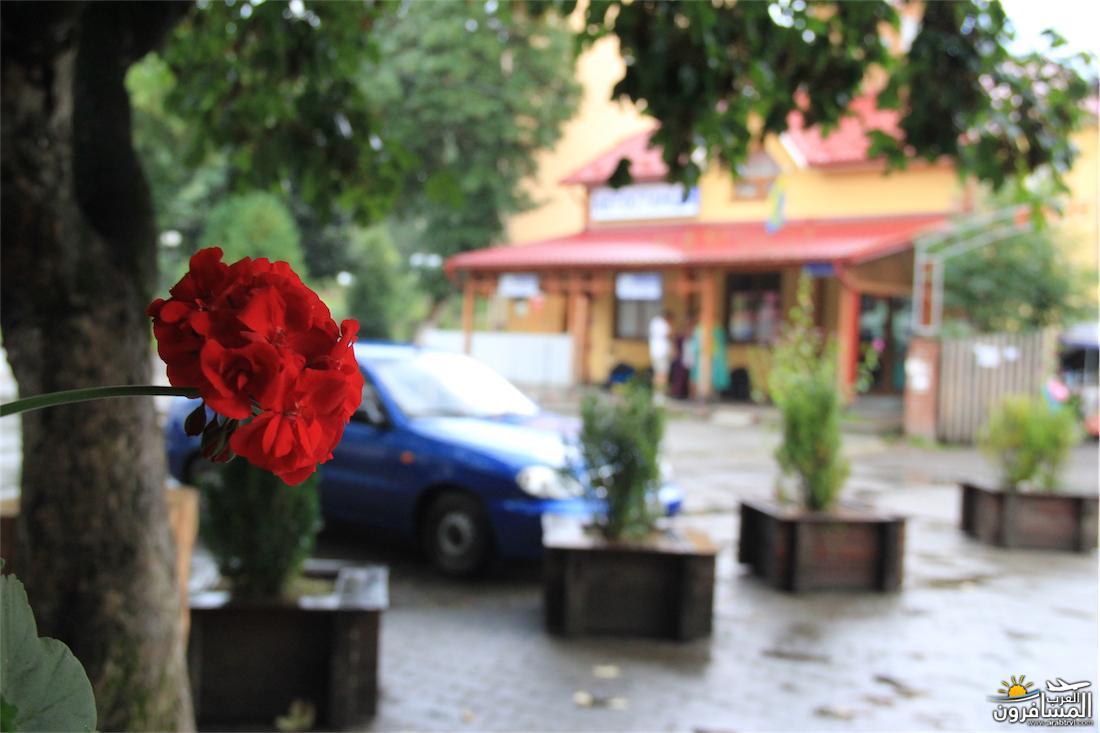 580502 المسافرون العرب مدينة لفيف غرب أوكرانيا