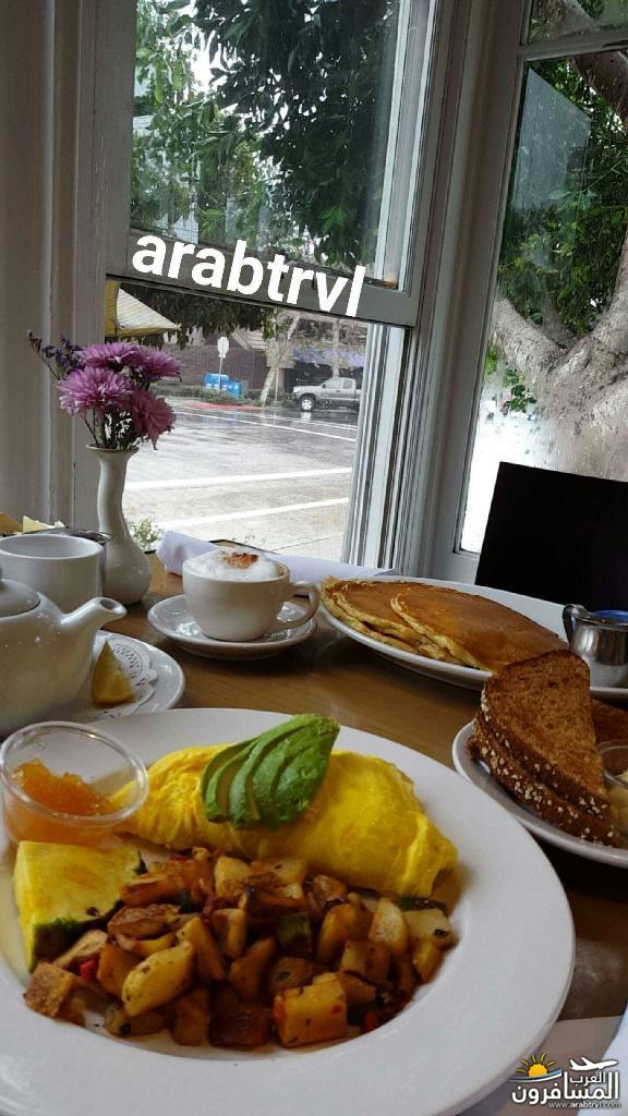 arabtrvl1462910124811.jpg