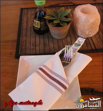امــــريكـــا القـــارة-594687
