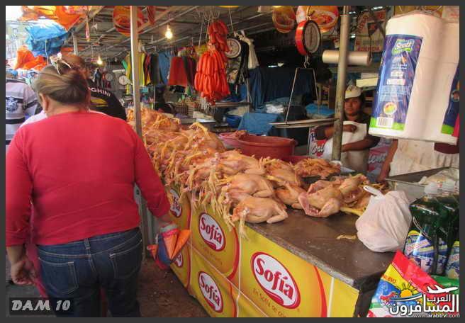 مدينة بوليفيا دولة داخلية في أمريكا الجنوبية-601270