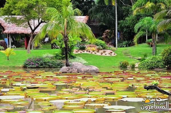 مدينة بوليفيا دولة داخلية في أمريكا الجنوبية-601295