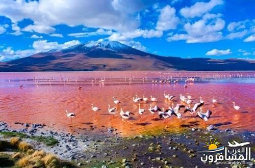 مدينة بوليفيا دولة داخلية في أمريكا الجنوبية-601339