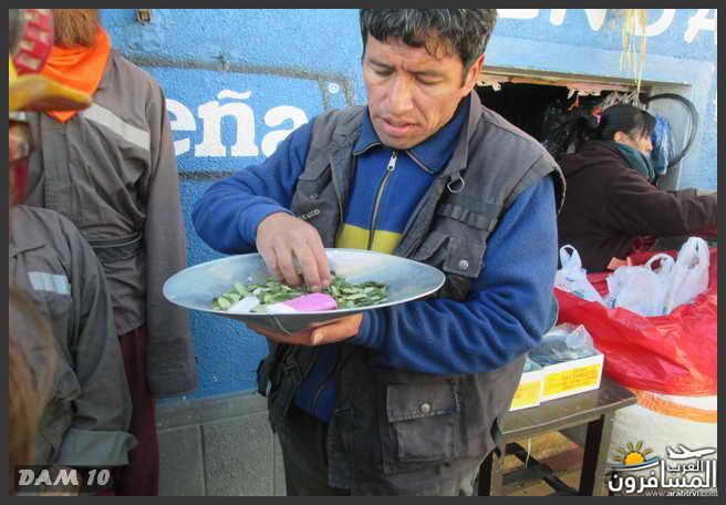 مدينة بوليفيا دولة داخلية في أمريكا الجنوبية-601362