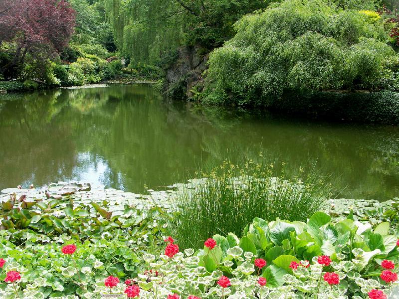 حدائق بوتشارت الملونة في كندا-604262