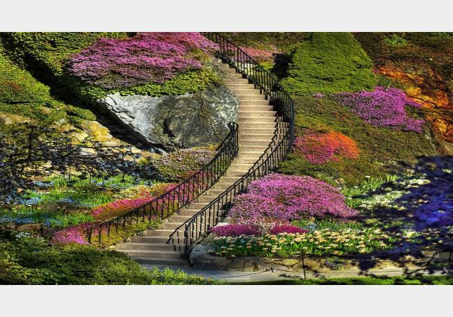 حدائق بوتشارت الملونة في كندا-604264