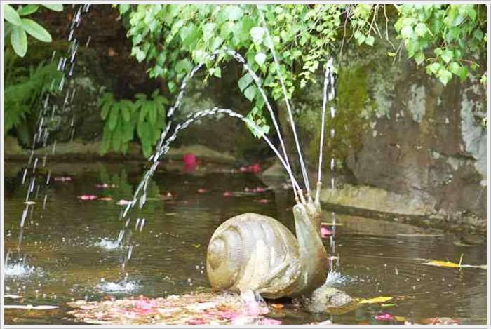 garden-14-768589.jpg
