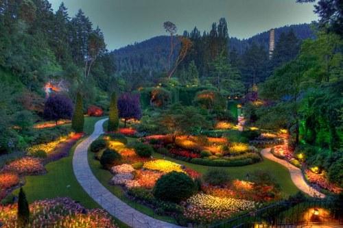 حدائق بوتشارت الملونة في كندا-604272
