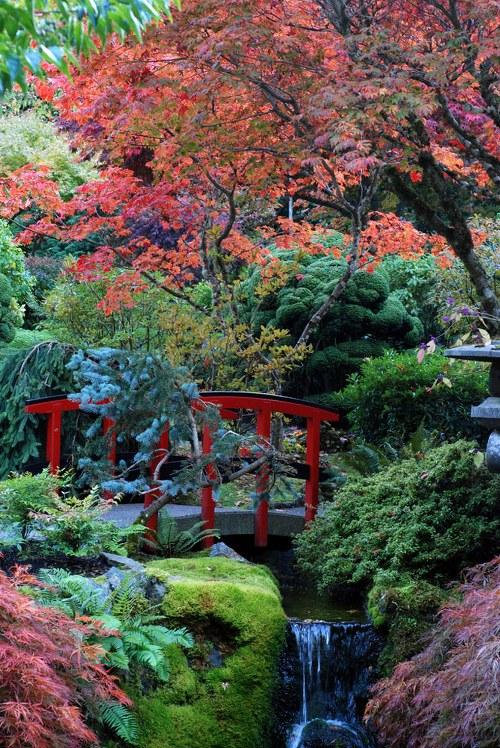 حدائق بوتشارت الملونة في كندا-604275
