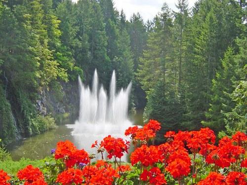 حدائق بوتشارت الملونة في كندا-604276