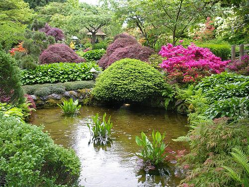 حدائق بوتشارت الملونة في كندا-604278