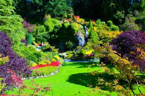 حدائق بوتشارت الملونة في كندا-604281