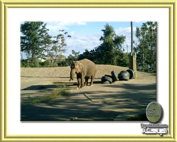 Zoo-14.jpg