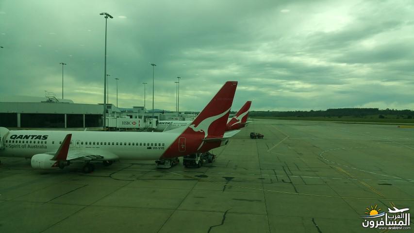 607710 المسافرون العرب تشيرز استراليا