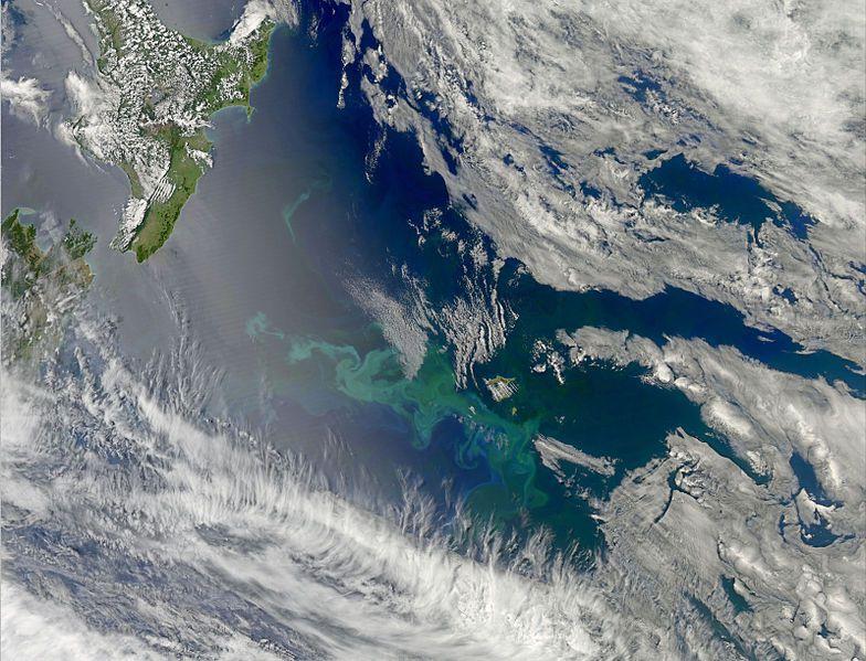 جزر تشاتام أرخبيل-608797