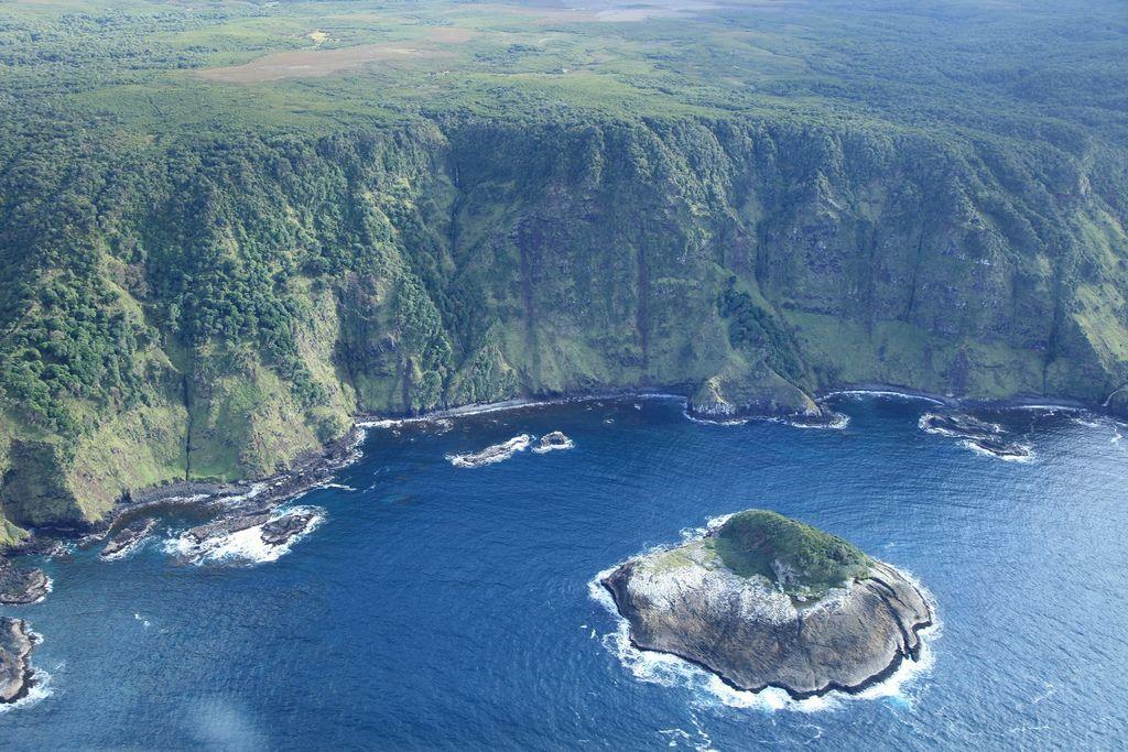 جزر تشاتام أرخبيل-608801