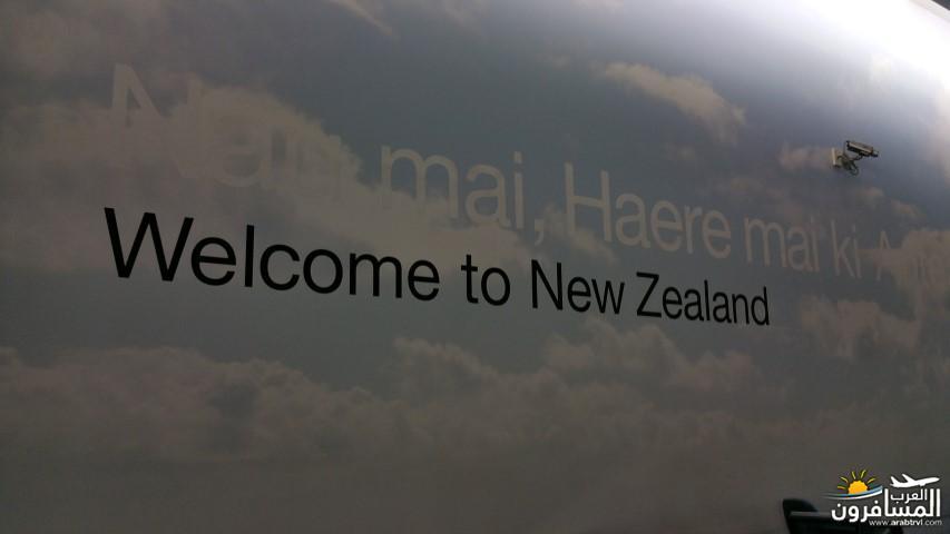 نيوزلندا العشق والجمال-609430
