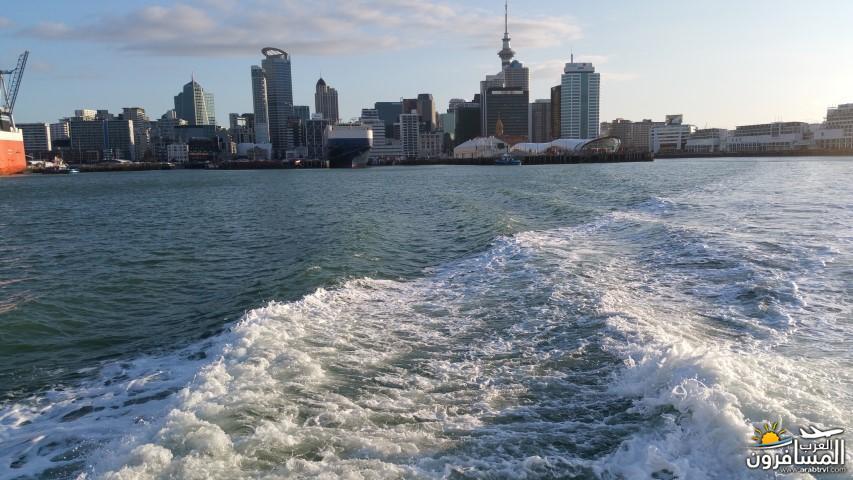 نيوزلندا العشق والجمال-609442