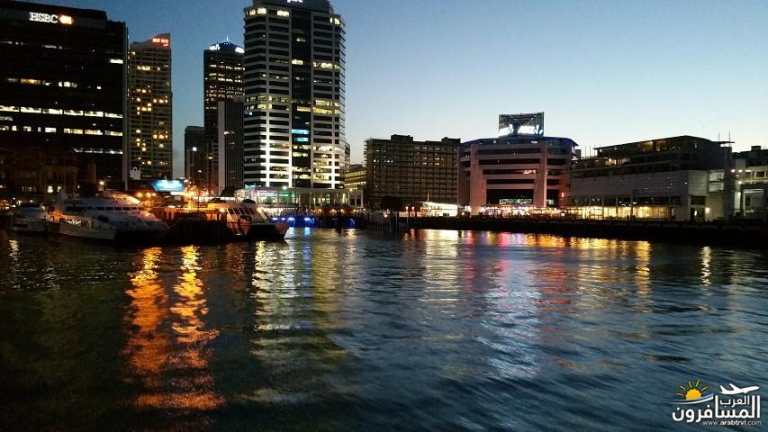 نيوزلندا العشق والجمال-609460