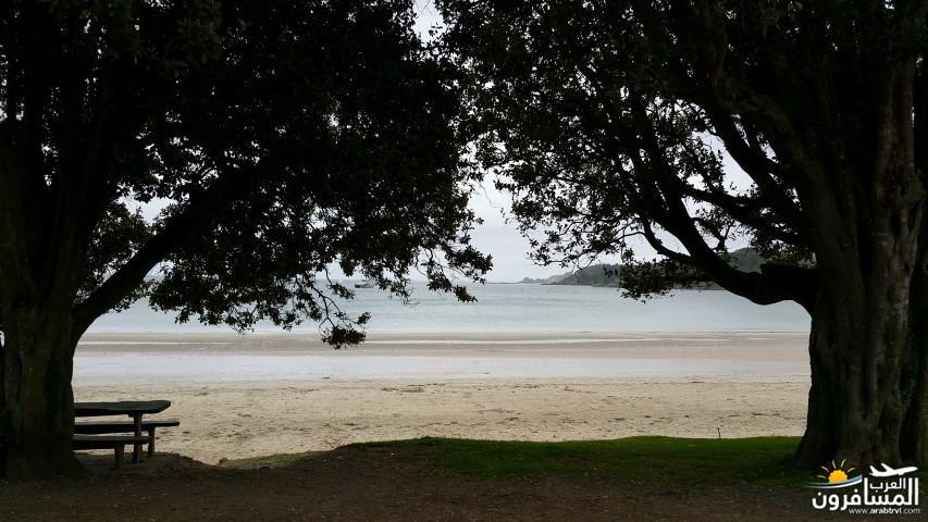 نيوزلندا العشق والجمال-609488