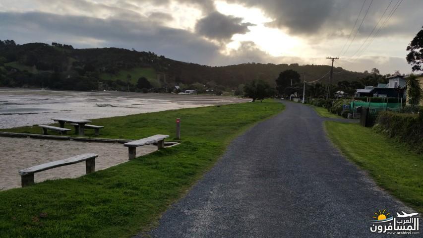 نيوزلندا العشق والجمال-609501