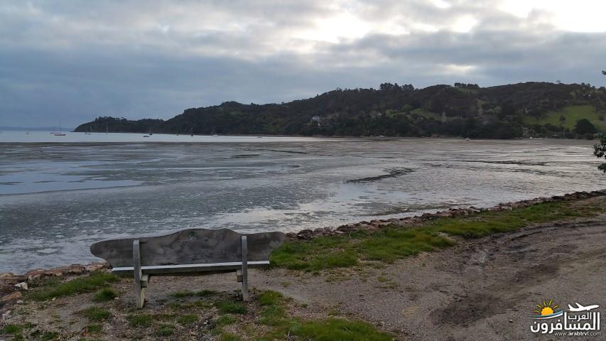 نيوزلندا العشق والجمال-609502