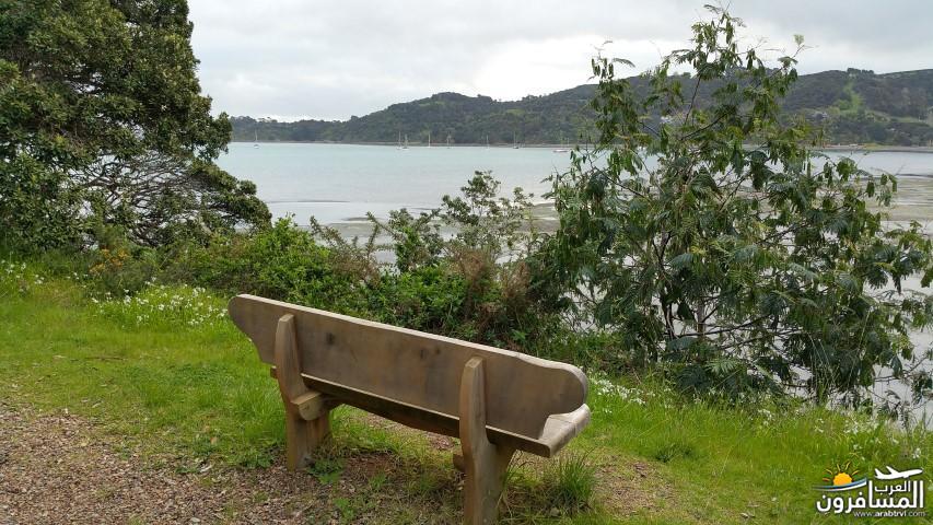 نيوزلندا العشق والجمال-609504