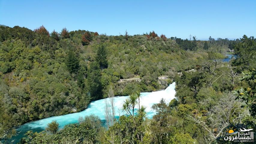 نيوزلندا العشق والجمال-609522
