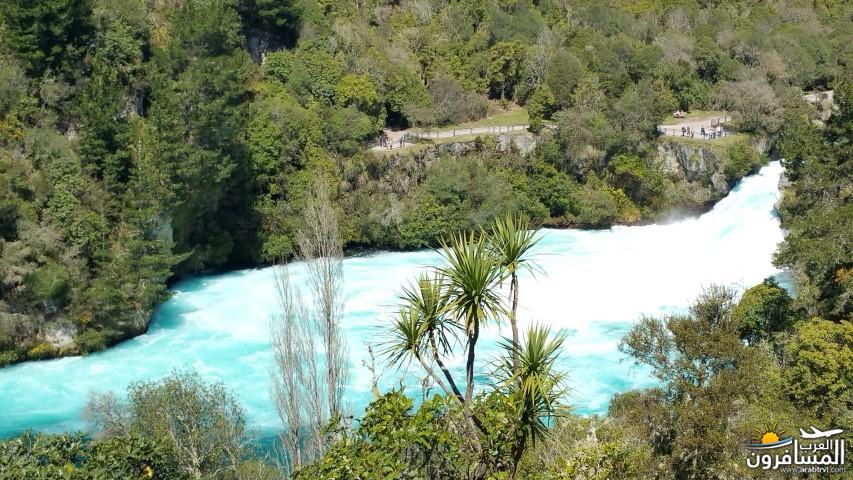 نيوزلندا العشق والجمال-609523