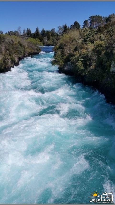 نيوزلندا العشق والجمال-609525