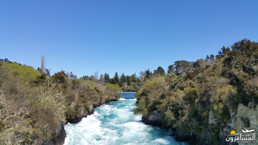 نيوزلندا العشق والجمال-609526