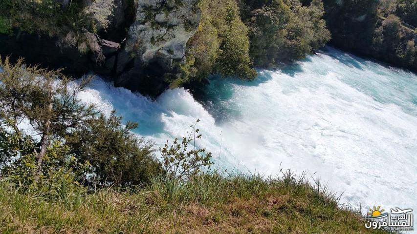 نيوزلندا العشق والجمال-609528