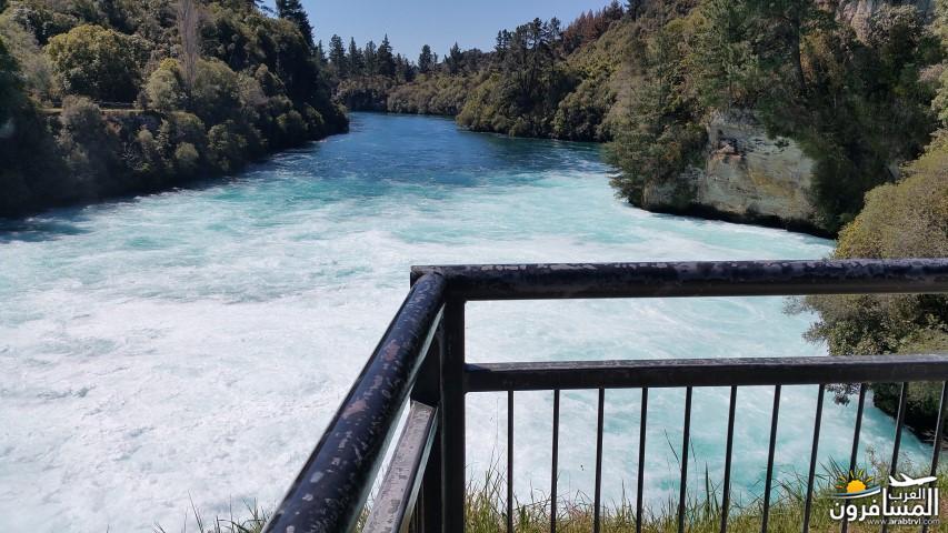نيوزلندا العشق والجمال-609529